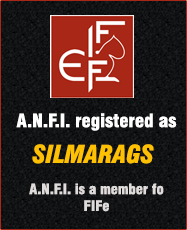A.N.F.I. registered as Silmarags